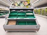 Britain should be braced for food rationing, academic expert warns