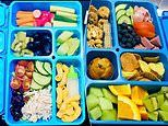 Mum raises eyebrows after making her husband VERY intricate lunchboxes like her kids