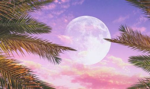 Pink Moon meaning: What is the meaning behind the Pink Moon?
