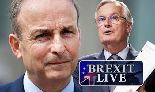 Brexit LIVE: Irish leader Micheál Martin drops major hint EU heading for no deal Brexit