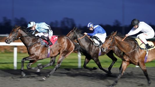 Horse Racing Tips: Timeform's three best bets at Wolverhampton on Tuesday