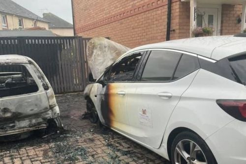 Mum's horror as family cars torched in Hamilton driveway attack