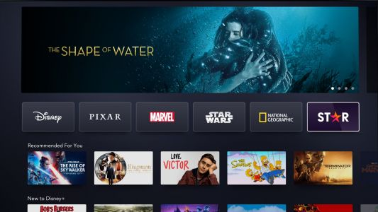 Disney Plus Star explained: release date, new TV shows, price increase and more