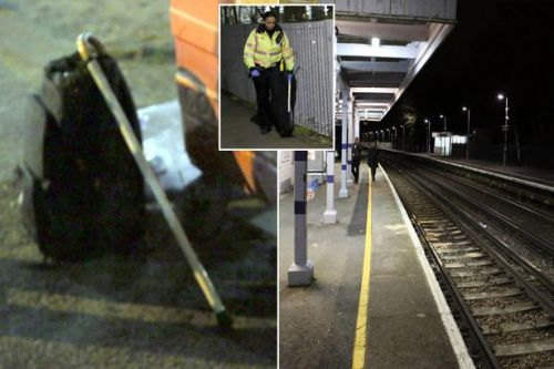 'Blind' man killed after 'stepping onto tracks when he heard wrong train door open'