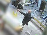 Sydney thief smashes Woolworths glass doors at 3am causing $750 worth of damage