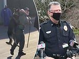 North Carolina cop is investigated for lifting K-9 by its leash and slamming it into patrol car