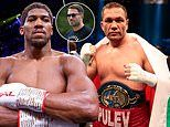 Anthony Joshua to defend titles against Pulev in December but 'strong chance' of being no fans