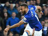 Everton 2-0 Crystal Palace: Super-subs Dominic Calvert-Lewin and Cenk Tosun score late for Toffees