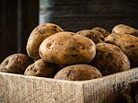 Tesco will sell unwashed potatoes for the first time since the 1970s in bid to cut food waste