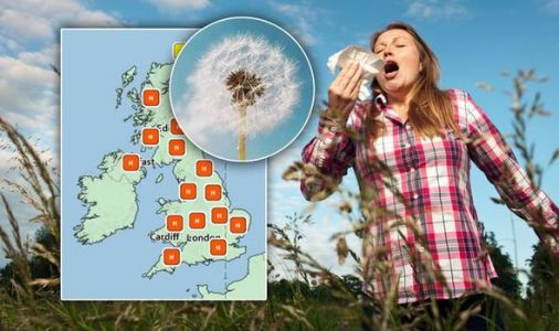 Pollen count warning: Hay fever sufferers at risk - where is the forecast highest?