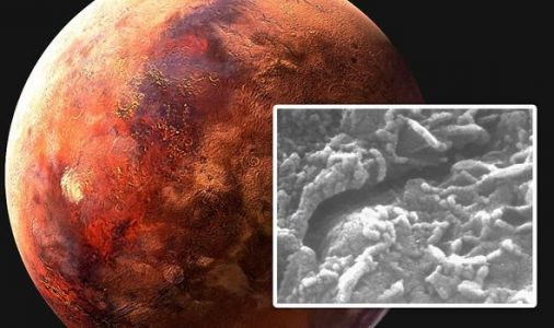 Life on Mars breakthrough: Discovery of 'worms' point to 'far more hospitable planet'