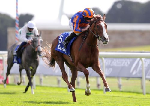 Arc de Triomphe: Love taken OUT of the Arc by trainer Aidan O'Brien due to heavy ground at Longchamp