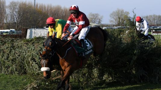 Virtual Grand National 2020 live stream: how to watch for free and the best betting odds