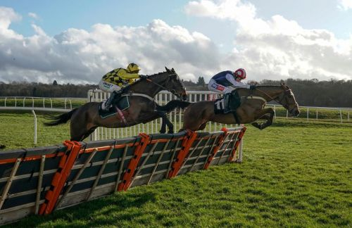 Exciting Shishkin enters the Cheltenham Festival picture with bloodless Newbury win