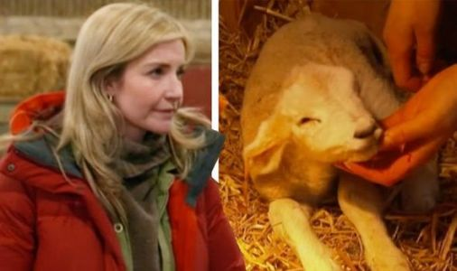 Countryfile: Helen Skelton 'distraught' as unwell baby lamb put to sleep hours after birth