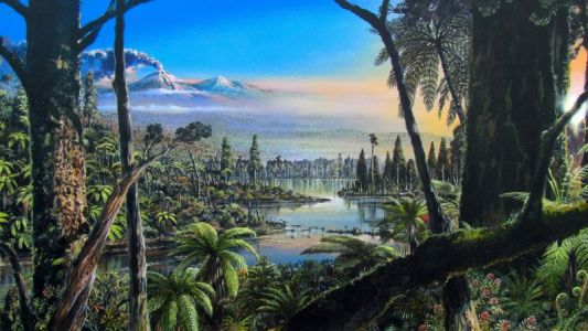 Shocking Study Reveals Ancient Rainforest Existed Near the South Pole