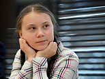 HENRY DEEDES sees Greta Thunberg in action as the pig-tailed wunderkind addresses the Commons