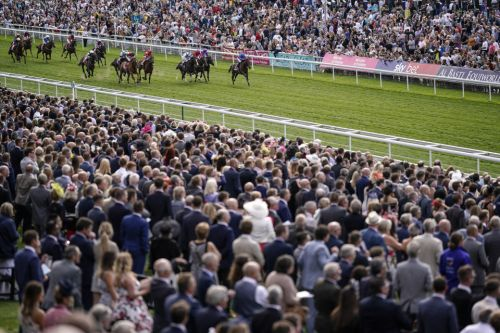Saturday Racing Tips: John Smith's Cup at York ripe for an each-way dart at big odds with Roger Fell hope