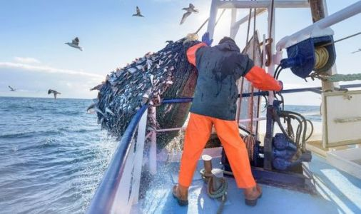 Brexit Britain's fishing plot: UK will use technology to track vessels in fishing waters