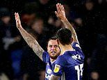 Cardiff 1-1 Sheffield Wednesday: Lee Tomlin's late strike rescues point for the Bluebirds