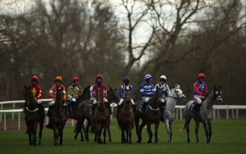 Marlborough racing tips and best bets for Saturday, January 16