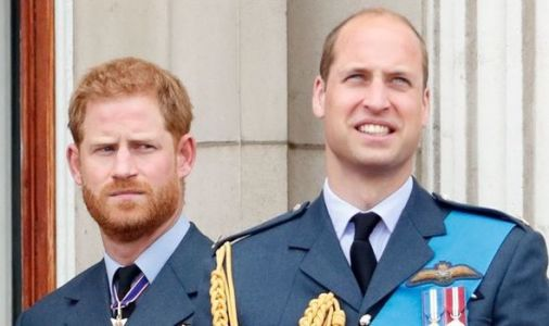 Prince Harry heartbreak as Will and Kate miss his virtual birthday party -'It was awkward'