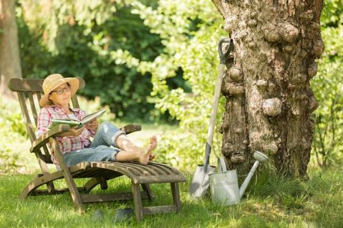 Six ways to make your garden a money-saving investment this summer
