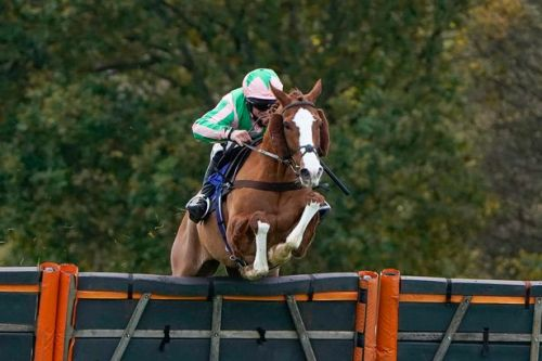 Alexander Thorne's 21-day ban to stand as BHA dismiss appeal
