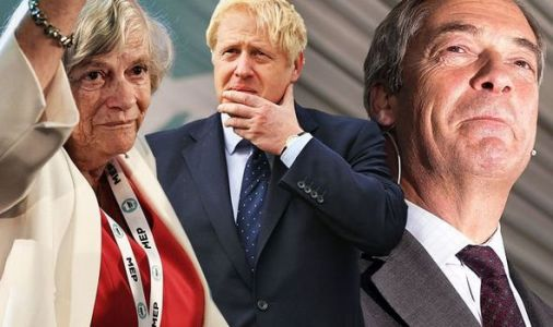 Give us no deal or the Brexit Party will decimate the Tory vote warns Ann Widdecombe
