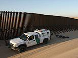 Don't build that wall! Pentagon scales back 20 miles of Donald Trump's border barrier