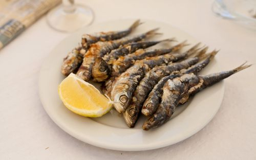 Where to eat in Malaga, including grilled sardines and churros