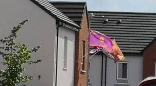 Alliance 'disappointed' by police response to UVF flags in Cantrell Close