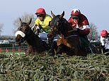 Two-time Grand National winner Tiger Roll finishes sixth on seasonal reappearance at Navan
