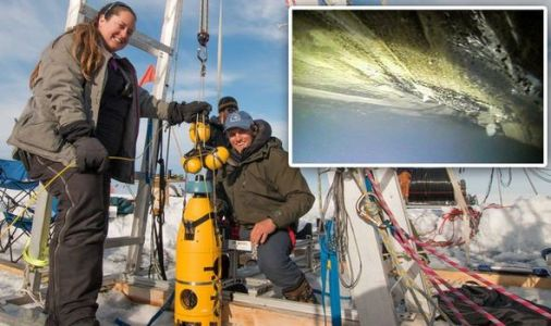Antarctica shock: Scientists lower robot 1,900ft into ice to make groundbreaking discovery