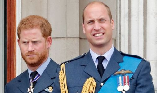 Royal snub: Prince William 'sent message' to Prince Harry which was 'taken to heart'