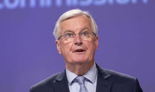 Michel Barnier says British 'don't understand' in spiteful rant 'Brexit has consequences'