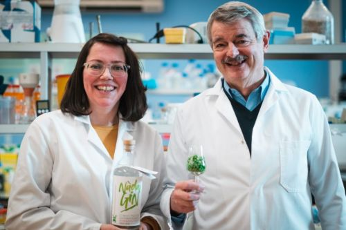 Scottish distillery Arbikie create 'world's first' climate positive gin made with garden peas