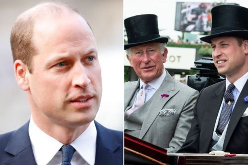 Prince William holds meetings as he prepares to take over major role from Prince Charles