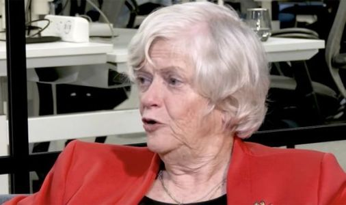 Ann Widdecombe mocks Macron and VDL as EU bully tactics 'turned Remainers into Brexiteers'