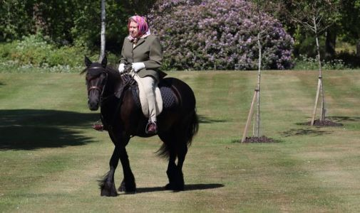 Queen, 94, seen riding pony in grounds of Windsor Castle for first time since lockdown began