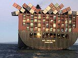 Cargo begins to wash up on Australia's beaches after 40 containers fell from a ship off Sydney