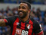 Chelsea target Callum Wilson shuts down talk he wants to leave Bournemouth this summer