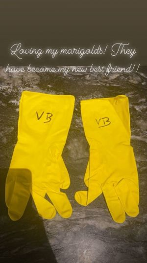 David Beckham Vandalises Wife Victoria's Rubber Gloves With Penis Drawing, And Yes We're Bored Too David