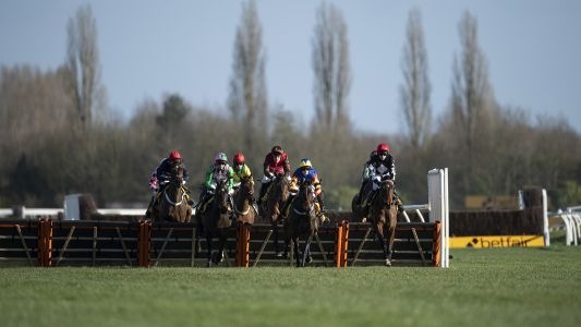 Horse Racing Tips: Saturday's best bets and insight from Betfair's ambassadors