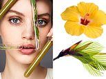 Why you should swap Botox for Hibiscus and other natural ageing alternatives