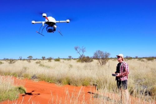 Ecologists confirm Alan Turing's theory for Australian fairy circles