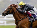 Gosden fears rain could hit Stradivarius' bid to land a record-equalling fourth Ascot Gold Cup