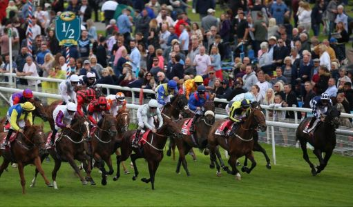 York races: tips, racecards and previews for Saturday's card on the Knavesmire as the Ebor Handicap takes centre stage