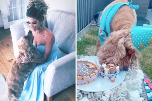 Mrs Hinch celebrates her dog Henry turning five with an amazing party