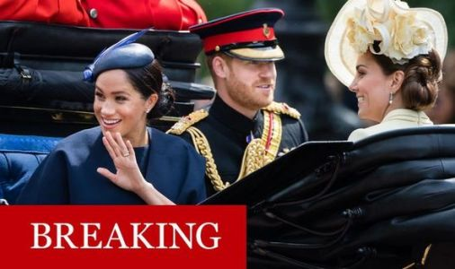 Meghan Markle and Kate SPLIT: Harry and William foundation split -Meghan plots new charity